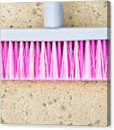 Pink Broom Canvas Print