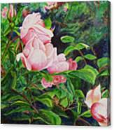 Pink Cascade Canvas Print