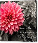 Pink Dahlia With John Lennon Quote Canvas Print