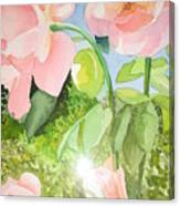 Pink Dream Canvas Print