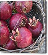 Pomegranates In A Basket Canvas Print
