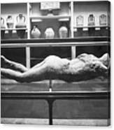 Pompeii: Plaster Cast Canvas Print