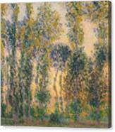 Poplars At Giverny, Sunrise Canvas Print