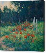 Poppy Garden Canvas Print