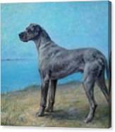 Portrait Of A Great Dane Canvas Print