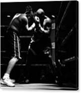 Prize Fighters Canvas Print