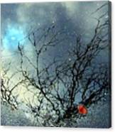 Puddle Art Canvas Print