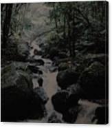 Puerto Rico Water Canvas Print