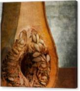 Pumpkin Anatomy Canvas Print