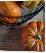 Pumpkin Canvas Print