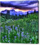 Purple Skies And Wildflowers Canvas Print