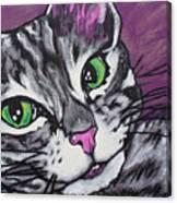 Purple Tabby Canvas Print