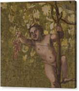 Putto Gathering Grapes Canvas Print
