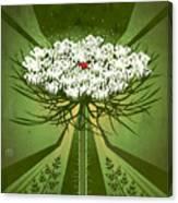 Queen Anne's Lace Print Canvas Print