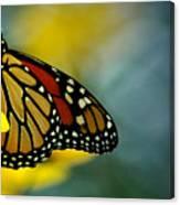 Queen Monarch Canvas Print