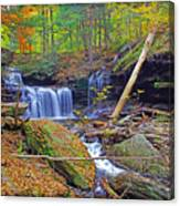 R B Ricketts Falls In Autumn Canvas Print