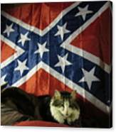 Rebel Cat Canvas Print