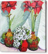 Red Amaryllis With Shooting Star Hydrangea Canvas Print