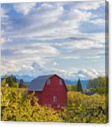 Red Barn And Mt Hood Canvas Print