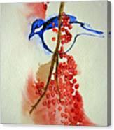 Red Berry Blue Bird Canvas Print
