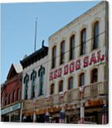 Red Dog Saloon Canvas Print
