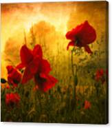 Red For Love Canvas Print