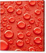 Red water drops Canvas Print