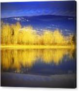 Reflections In Gold Canvas Print
