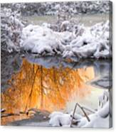 Reflections In Melting Snow Canvas Print