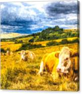 Resting Cows Art Canvas Print