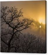 Rime Ice And Fog At Sunset - Telephoto Canvas Print
