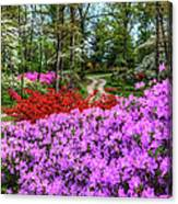 Road With Flowers Canvas Print