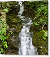 Roadside Waterfall Canvas Print