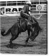 Rodeo Saddleback Riding 5 Canvas Print