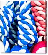 Rope Toys Canvas Print
