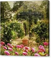 Rose Arbor Canvas Print