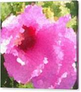 Rose Of Sharon In Abstract Canvas Print