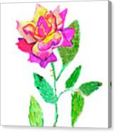Rose, Watercolor Painting Canvas Print