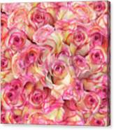 Roses Background Canvas Print