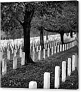 Rows Of Honor Canvas Print
