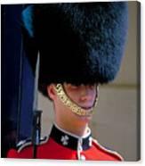 Royal Guard Canvas Print