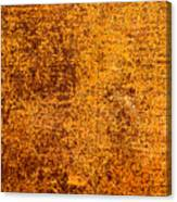Old Forgotten Solaris Canvas Print