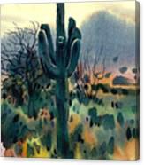 Saguaro Canvas Print