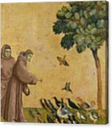 Saint Francis Of Assisi Preaching To The Birds Canvas Print