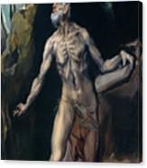 Saint Jerome Canvas Print