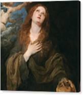 Saint Rosalie Canvas Print