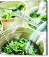 Salad Bar Buffet Fresh Mixed Lettuce Display Canvas Print