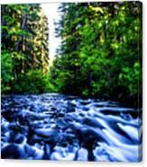 Salt Creek Falls Canvas Print