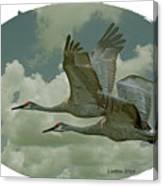 Sandhill Crane Pair Canvas Print
