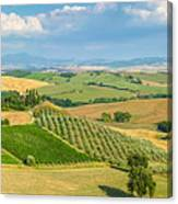 Scenic Tuscany Landscape At Sunset, Val D'orcia, Italy Canvas Print